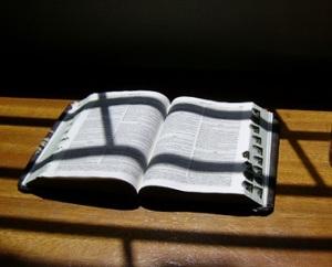 biblebarsshadow